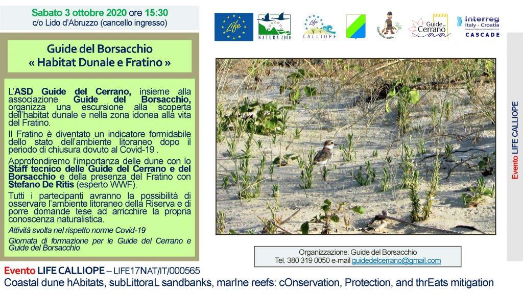 2020 – Escursione Habitat Dunale e Fratino