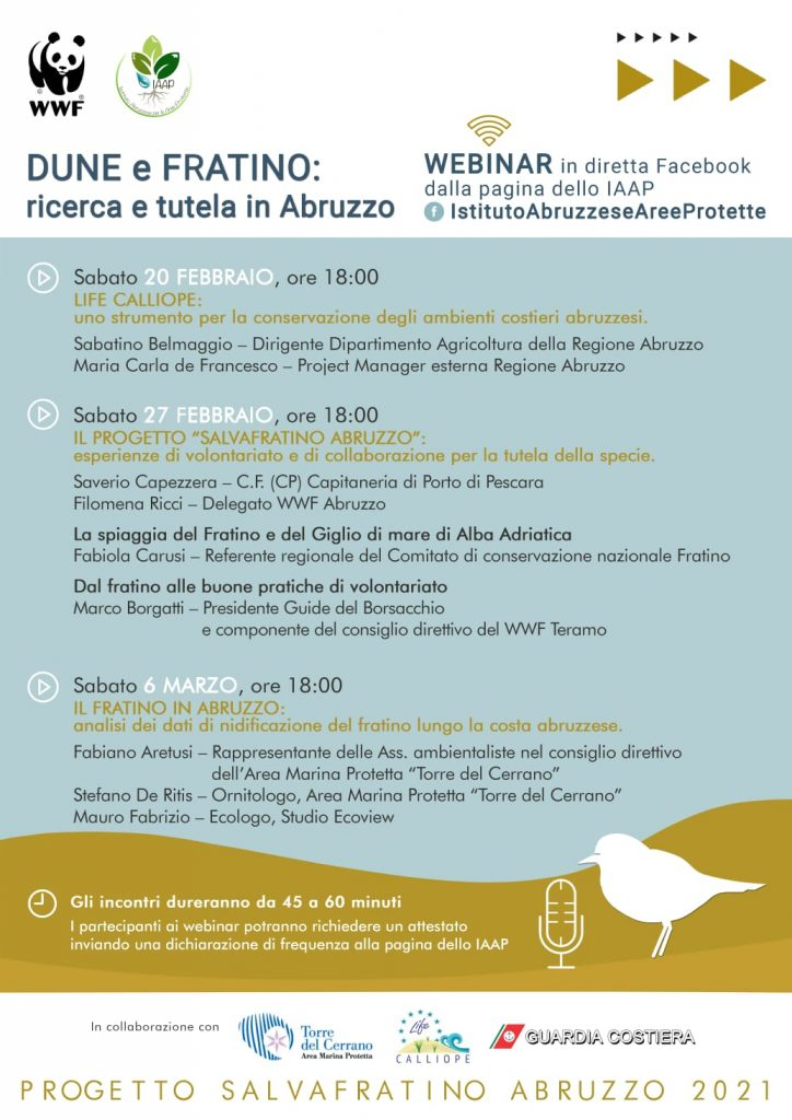 Dune e Fratino: ricerca e tutele in Abruzzo